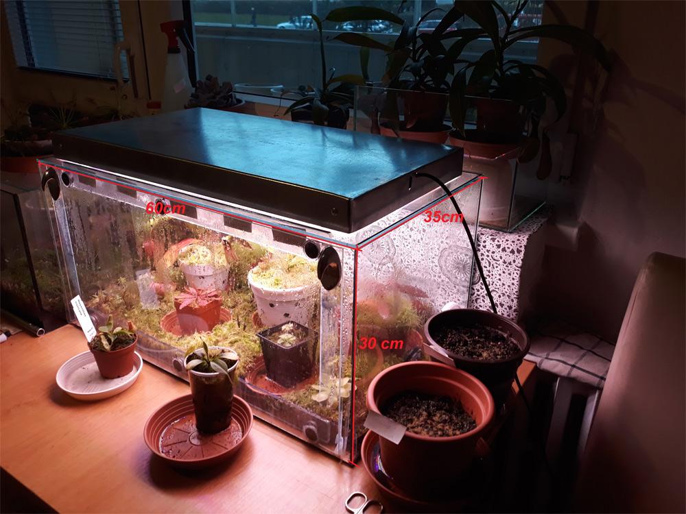 Akvárium pro indoor pěstování masožravek